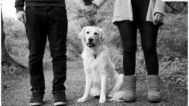 Dog Friendly Weddings – 10 Top Tips